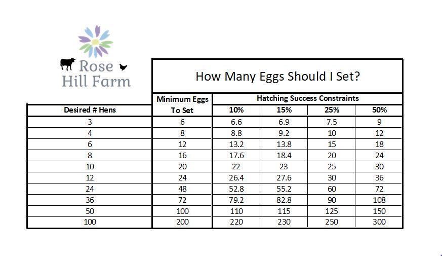 How Many Eggs Should I Set Chart - Rose Hill Farm