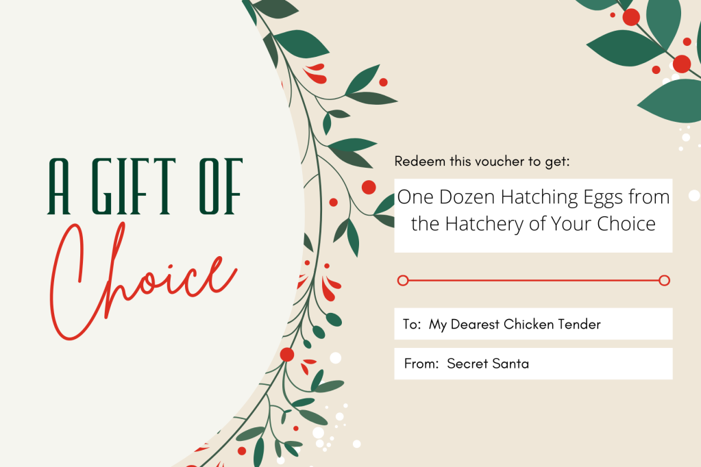 Christmas gift card example for one dozen hatching eggs, written to my dearest chicken tender from secret santa
