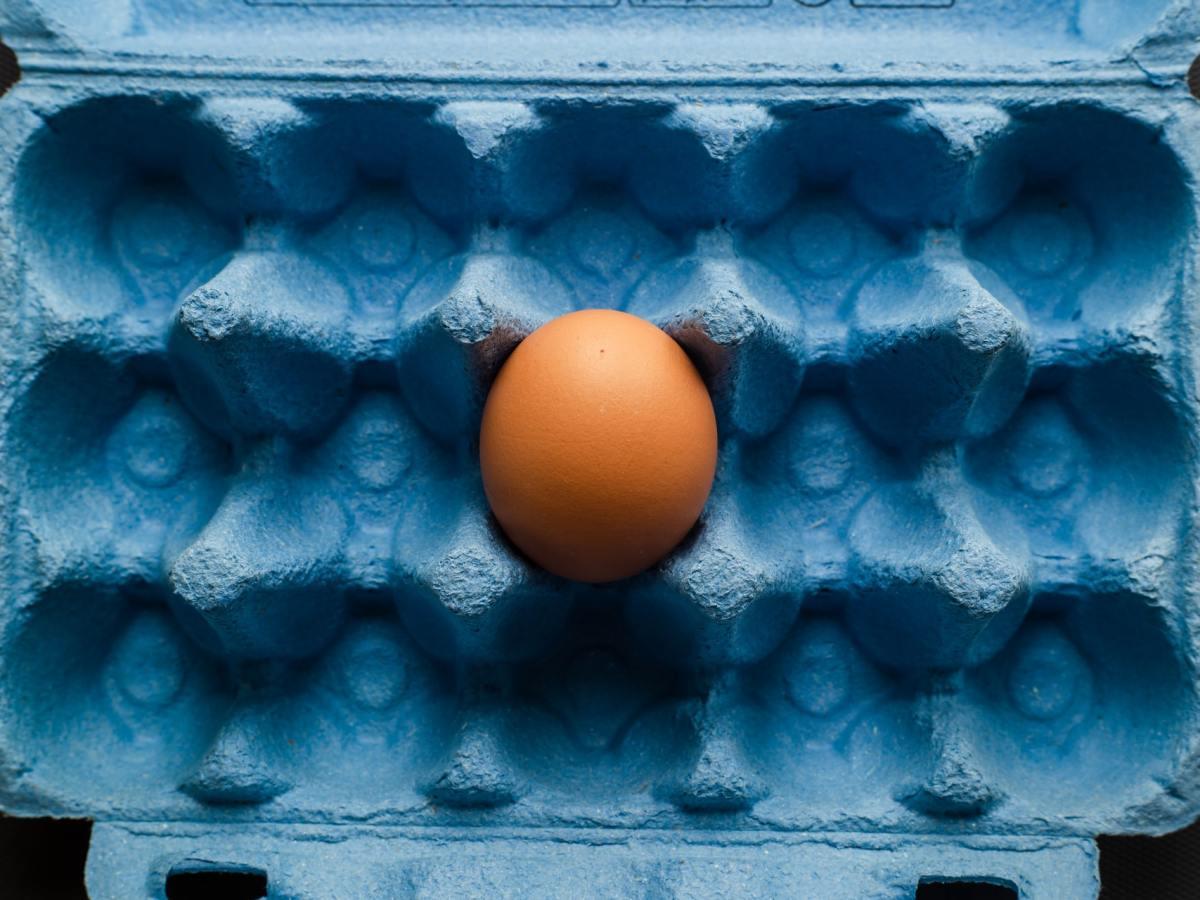 Empty egg carton except for 1 egg