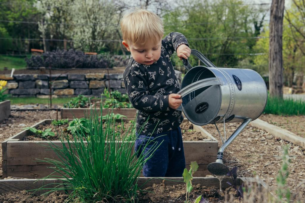 A small boy watering a raised garden bed